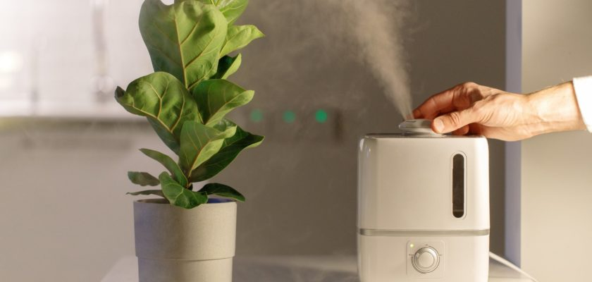 How Can You Improve Your Indoor Air Quality?
